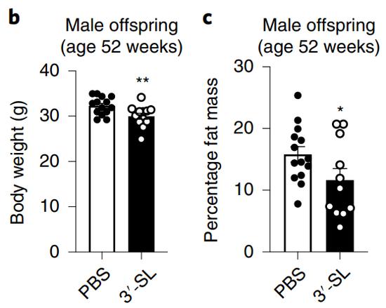 对比对照组(PBS),3SL喂养的减重成绩真的不错