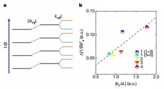 图5 外尔轨道内朗道能级偏移的分析。