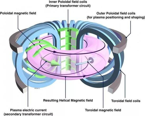 粉红色的区域是托卡马克里的等离子体,类似一个甜甜圈的形状。(图片来源:http://www1.cfi.lu.lv/teor/main.html)