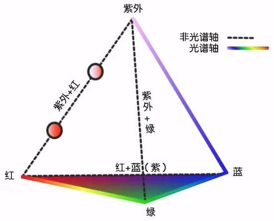鸟类所能看到的颜色通常可以用一个四面体的颜色空间来表示。| 图片来源:Stoddard Lab