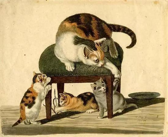 戈特弗里德·明特是一位艺术型学者综合征患者,他画的猫纤毫毕现。图源:Alamy
