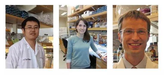 ▲本研究的第一作者段屹博士(左),Cristina Llorente博士(中),以及通訊作者Bernd Schnabl教授(右)(圖片來源:Bernd Schnabl教授實驗室官網)
