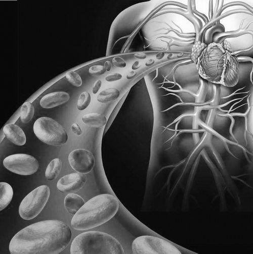 """心脏干细胞钻研造伪:不代外""""心肌新生""""被推翻"""