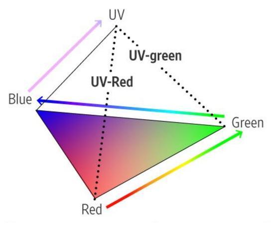 鸟类能看到的色域,比人类大了不止一点