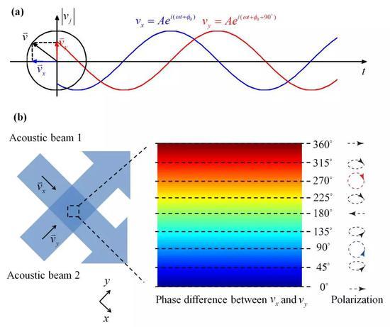 声波自旋。(a)相差90度相位的局域速度场垂直分量产生旋转偏振从而导致声波自旋。(b)两束垂直相干的声波中的自旋场。