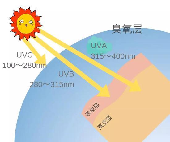 紫外线成分示意图(图片来源:作者制作)