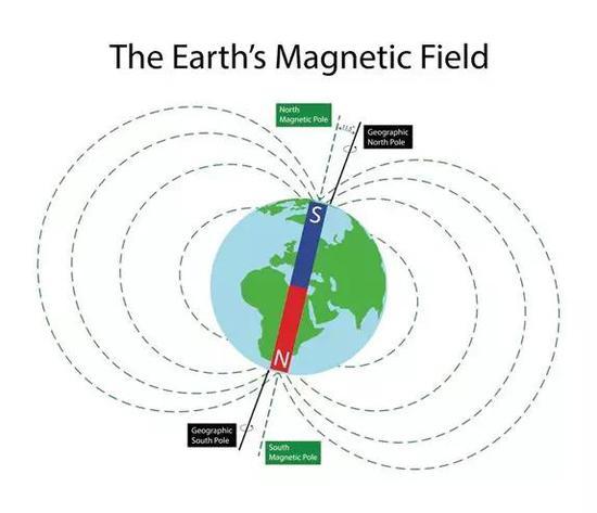 地球上的生物暴露在始终存在着的地球磁场中,这些磁场在星球表面不同地方密度和方向各不相同。