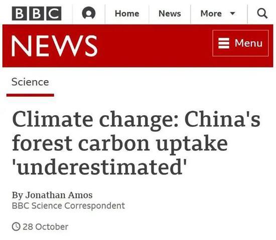 """BBC:中国植树造林的碳吸收作用""""被低估了"""""""