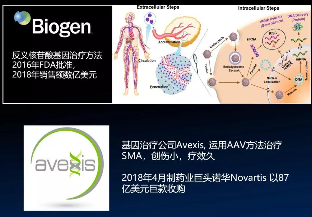 SMA基因疗法药物开发的两家公司