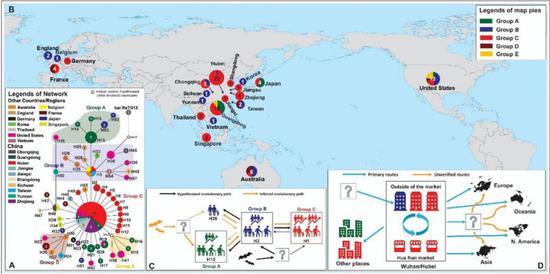 新冠病毒的扩散(图片来源:参考文献1)