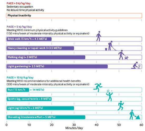 不同运动的活动量,15分钟1MET的运动大约能添加1kJ/kg/天的运动量