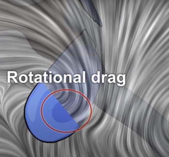 旋转阻力 图源:nature video