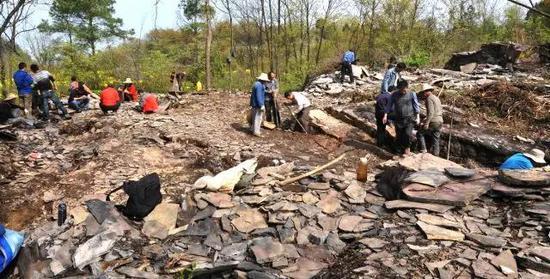 三峡地区埃迪卡拉系地层化石发掘现场