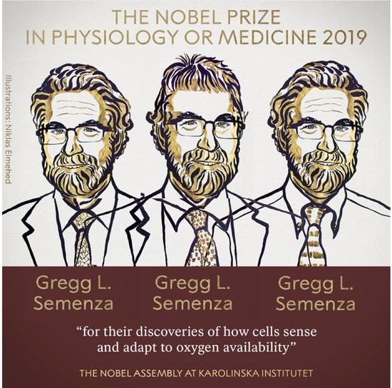图|塞门扎获得 2019 诺贝尔心理学或医学奖,图为受访者画的漫画