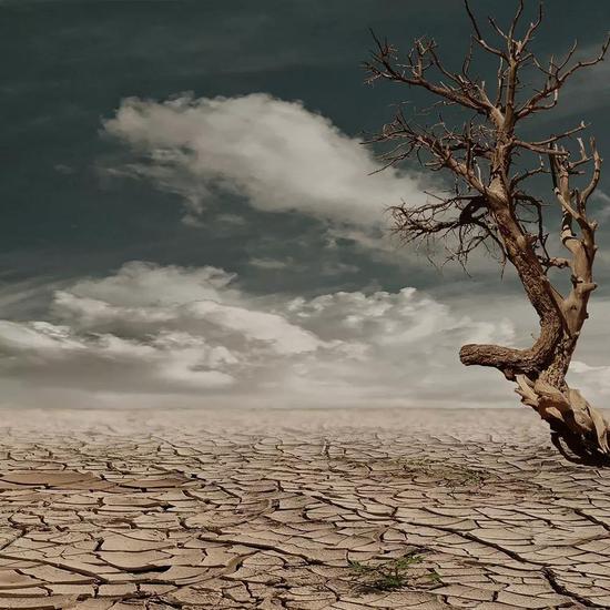 论文标题:Trajectories of the Earth System in the Anthropocene
