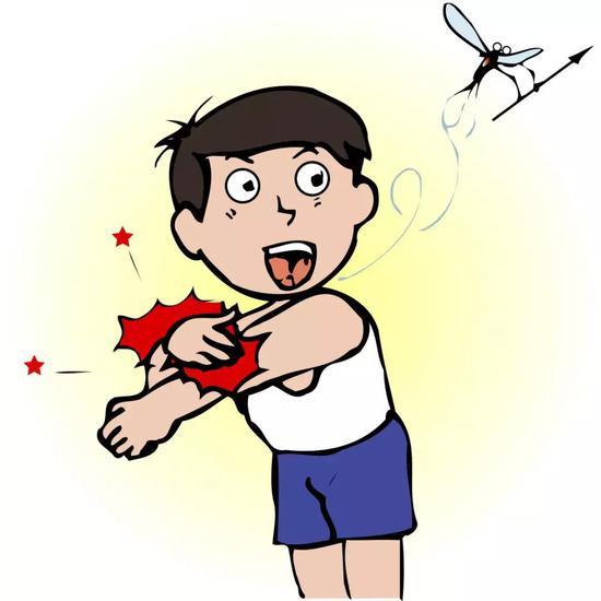 可恶的蚊子(图片来源:veer图库)
