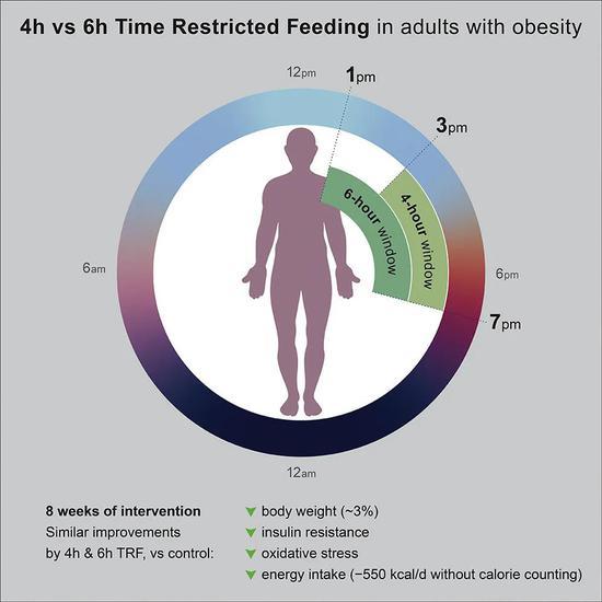 这项试验为期10周,58名BMI在30-50kg/m2之间的肥胖患者被随机分为3组:不受限制的对照组(19人)、4小时限制进食组(20人)和6小时限制进食组(19人)。