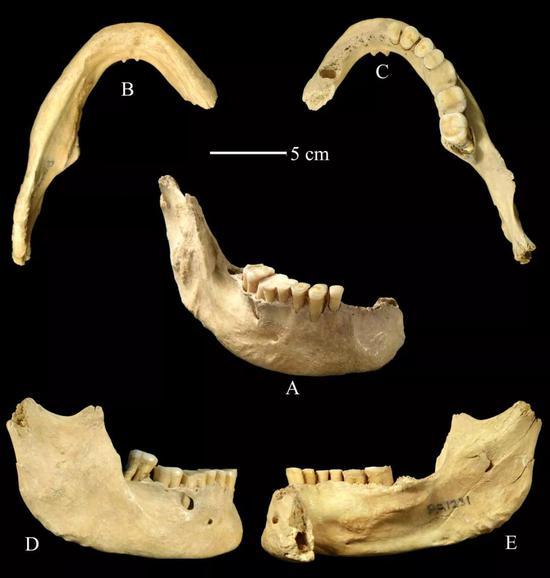 在周口店田园洞发现的人类下颌骨化石