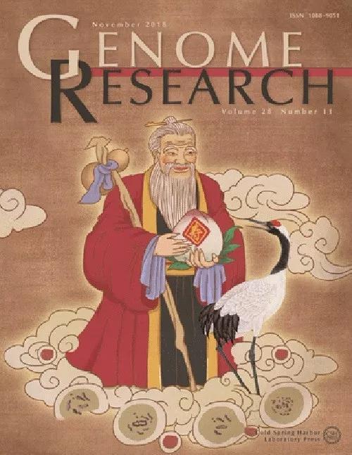 最新一期Genome Research以中国传统寿仙行为封面。