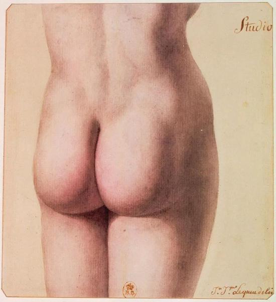 法国建筑师让·雅克·勒克(Jean Jacques Lequeu)1785年绘制的人类臀部。图源:wikipedia