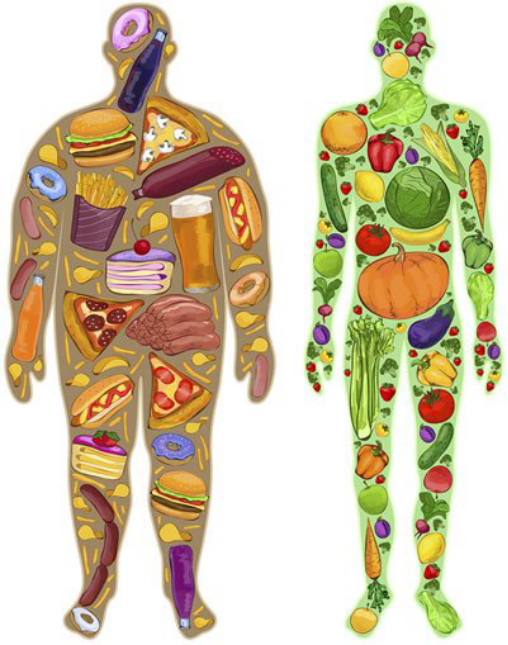 How Long Does It Take To Lose Weight?图片来源:https://www.pritikin.com/your-health/health-benefits/healthy-weight-loss/1723-healthy-weight-loss-plan.html