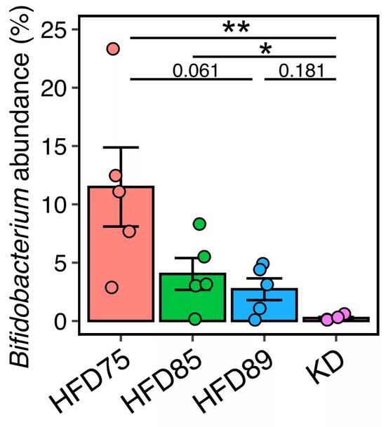 ▲双歧杆菌的丰度与食物碳水之间的关系