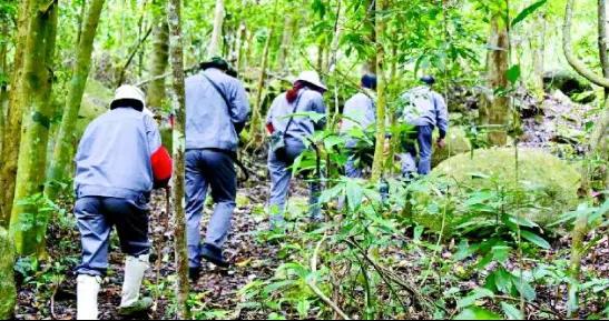 图中护林员正在山中巡查 图片来源:人民网