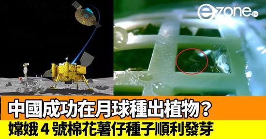 """由重慶大學牽頭研制的""""嫦娥4號""""生物學實驗,成功在月球背面培育出棉花種子胚芽"""
