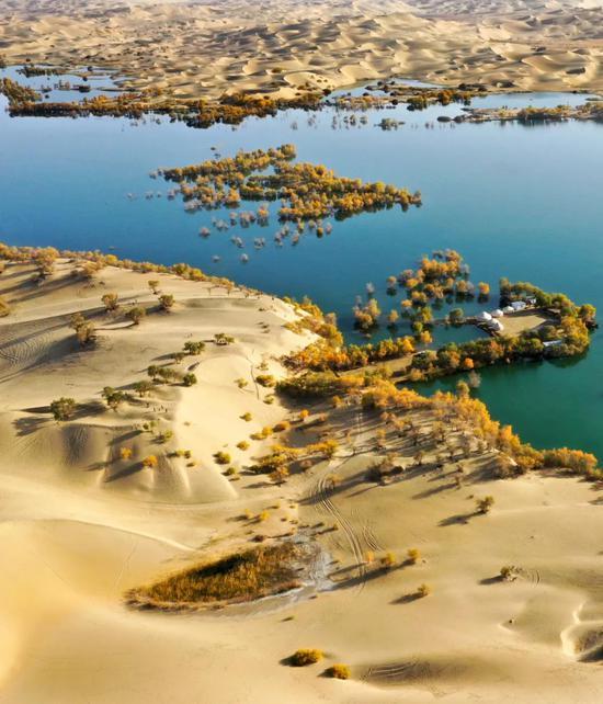 塔里木河下游的无名湖泊| 塔里木河下游地区尉犁县境内有很众小湖泊,它们由河水补给的地下水外渗形成,常滋长着胡杨林。摄影师@柴江辉