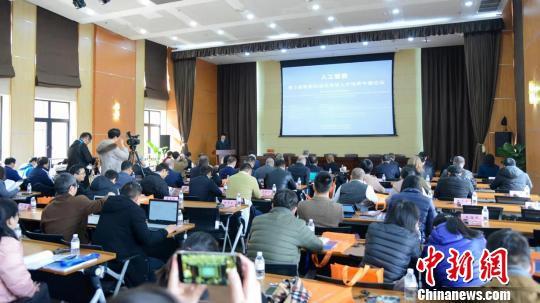 """""""人工智能:第三届智能制造应用型人才培养中德论坛""""正在上海举行。 芊烨 摄"""