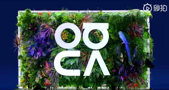 华为公布nova系列全新Logo,nova5也要即将发布