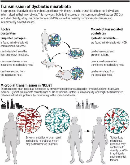 ▲失衡的肠道微生物群可以传播给其他个体,从而可能导致非传染性疾病的传播(图片来源:参考资料[1])