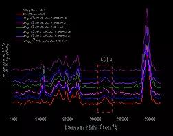 重水标记大肠杆菌的拉曼光谱图(图片来源:Induction of Escherichia coli into a VBNC state through chlorination/chloramination and differences in characteristics of the bacteriumbetween states)