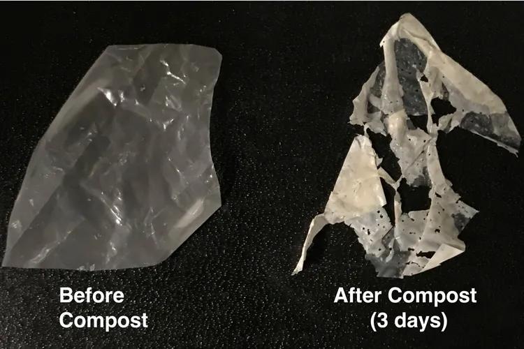 此类塑料在很短的时间内就能被降解(UC Berkeley photo by Ting Xu;Courtesy University of California, Berkeley)