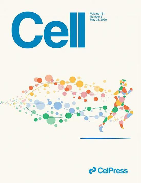 ▲这项研究登上了顶尖学术期刊《细胞》最新一期的封面,图中每种颜色代表一种分子系统(Image credit: Kexin Cha)