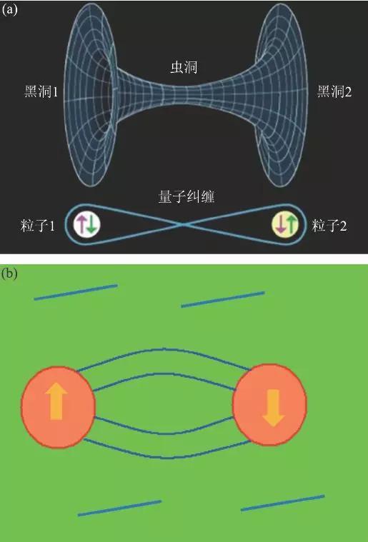 """图7 (a)ER=EPR 示意图:远程的虫洞连接和纠缠关联是等价的;(b)我们的一个猜想:真空背景(绿色)中充满了大量的关联(蓝线),正是这种""""以太""""造成两个相聚遥远的粒子发生纠缠"""