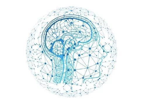 AI行为更依赖经验 不仅用来信息加工