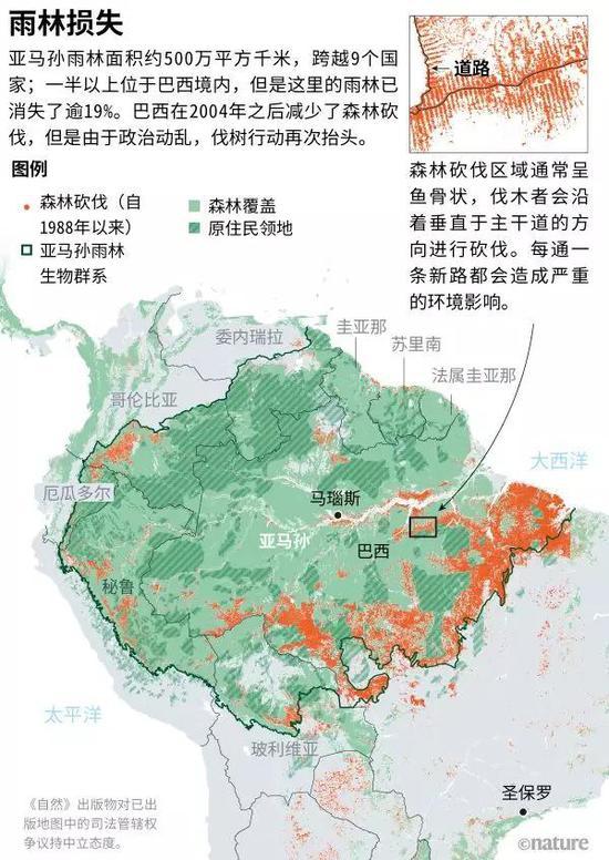 来源:TerraBrasilis(1988-2007年的巴西数据);RAISG(其他国家数据和原住民领地/亚马孙流域边界);Hansen/UMD/Google/USGS/NASA(2000-2018年的树木损失数据:https://go.nature.com/39CE2FC);ESA Land Cover CCI Product(森林覆盖)。