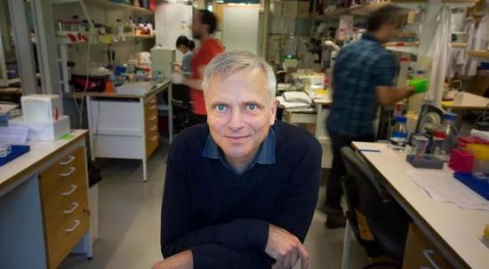 研究负责人、卡罗林斯卡研究所的医学生物化学和生物物理学Patrik Ernfors教授