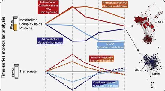 ▲短暂的剧烈有氧运动后,涉及不同生物学过程的数千种分子发生了变化,根据它们的变化可分为四组(图片来源:参考资料[1])
