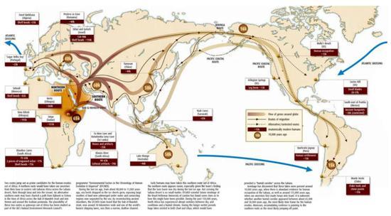 人类走出非洲