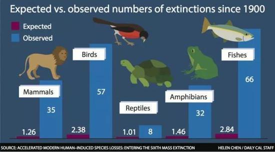 图4现代生物灭绝的速度远超过人们的预期(图片来源:nationalvanguard.org)
