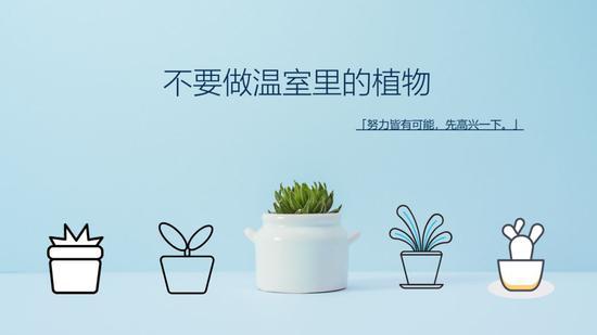在主张经营微博之前,我给很多人的一个理由都是,不要当温室里的花朵。