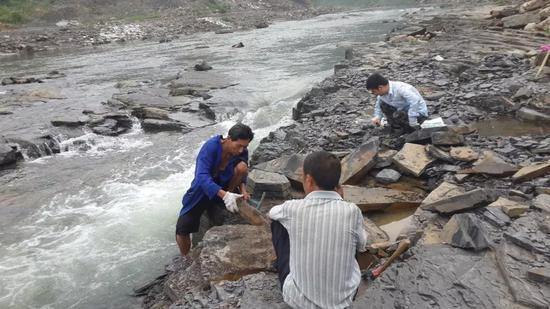 研究人员在淡水河岸边挖掘化石。摄影:傅东静