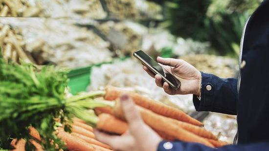 美团买菜着急北上 能否靠品质和效率迅速打开市场