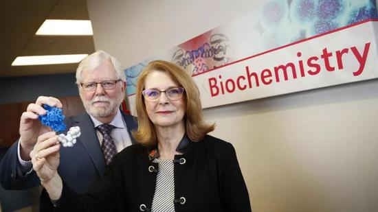 ▲该研究的两位合作者Paul Black教授(左)和Concetta DiRusso教授(图片来源:University of Nebraska-Lincoln)
