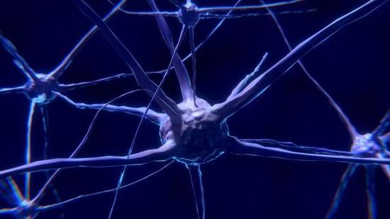 又要改写教科书?Science:在皮肤中发现新疼痛器官
