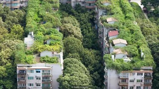 成都丰富的绿植让城市在夏季也能保持凉爽
