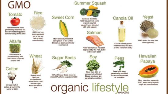 常见的转基因农作物,图源Organic Lifestyle mag