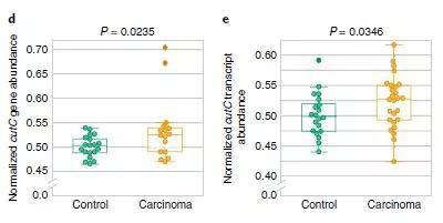 ▲肠道微生物表达胆碱代谢相关的酶的基因丰度在结直肠癌患者中更高(图片来源:参考资料[1])